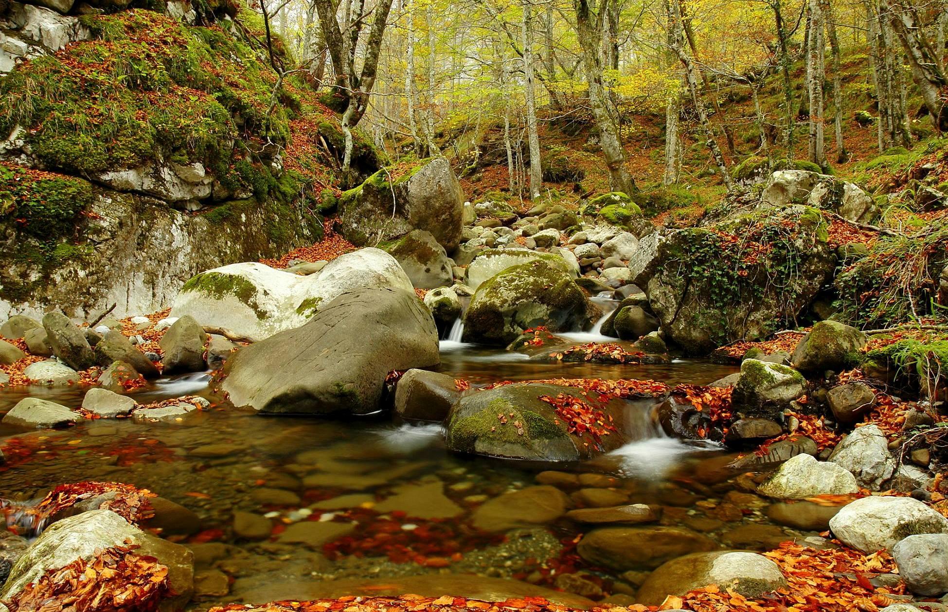 ✔ Una Ruta llena de Colores en un Valle Llamado Oscuru