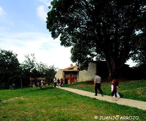 foto_4._museo_etnografico_del_oriente_de_asturias