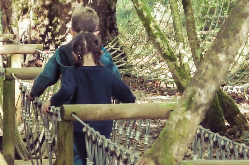 SELVA INFANTIL.. parque de retos para los más pequeños desde 5€